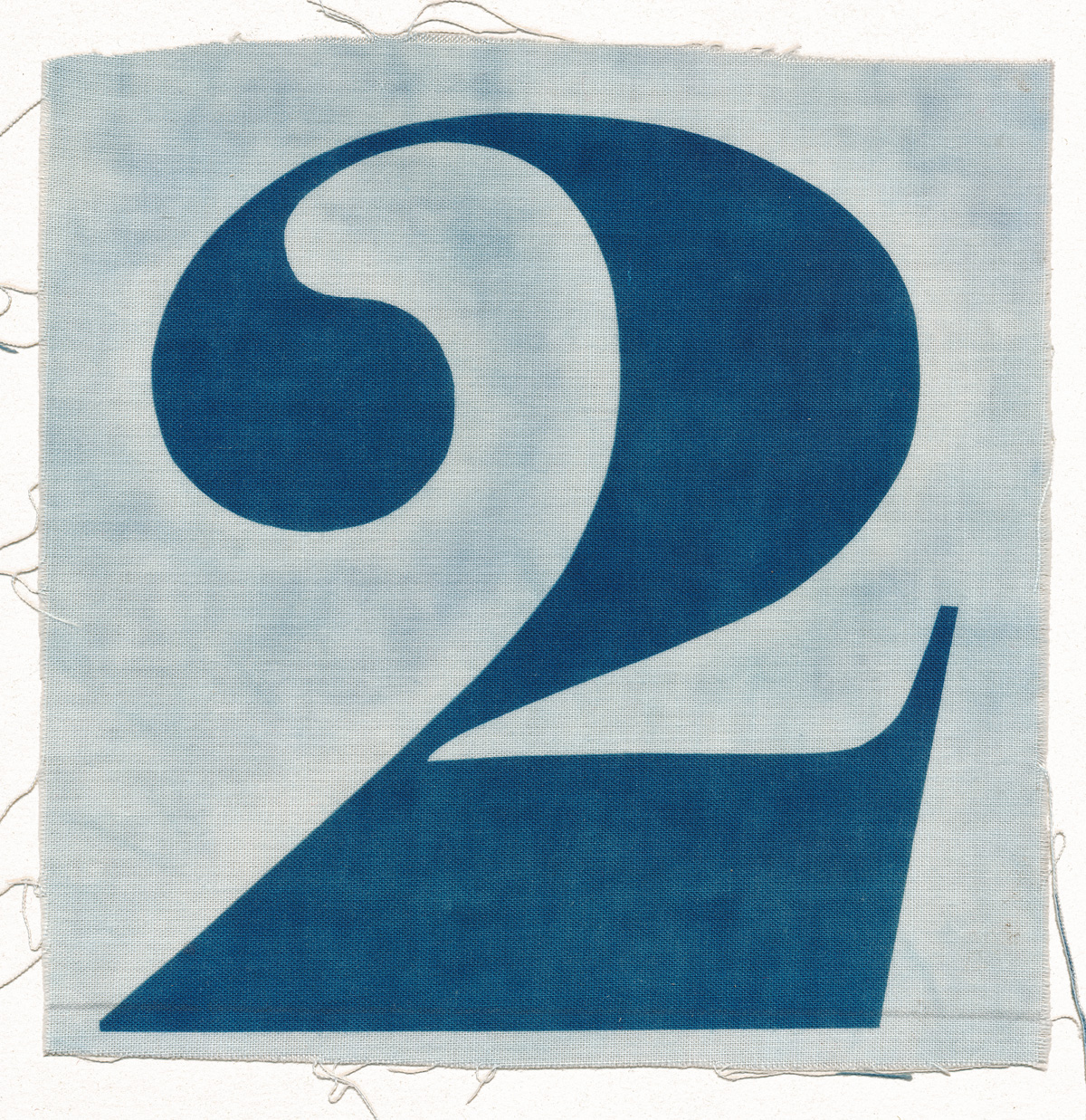 Two, cyanotype on cotton fabric, Mike Tedder