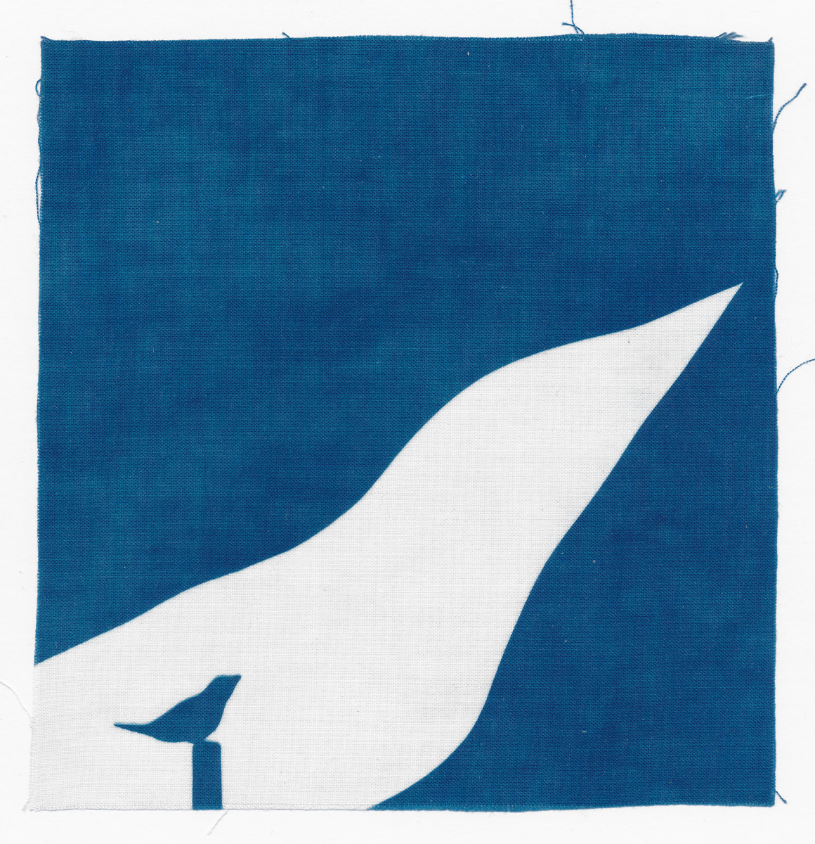 Chant du Rossignol, cyanotype on cotton fabric, Mike Tedder