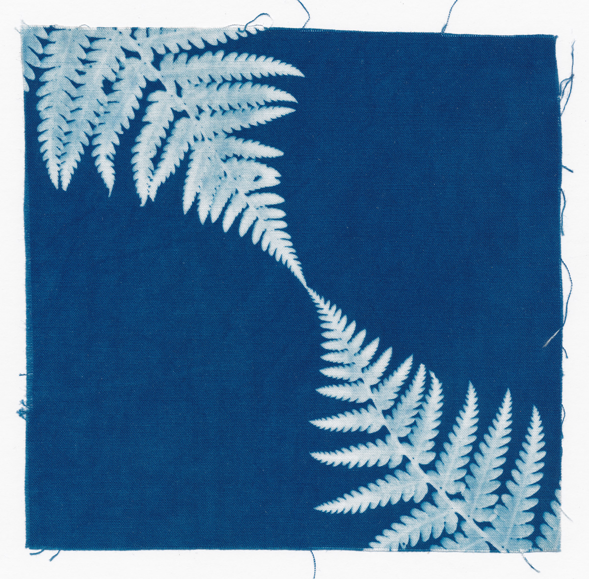 Touch, cyanotype on cotton fabric, Mike Tedder