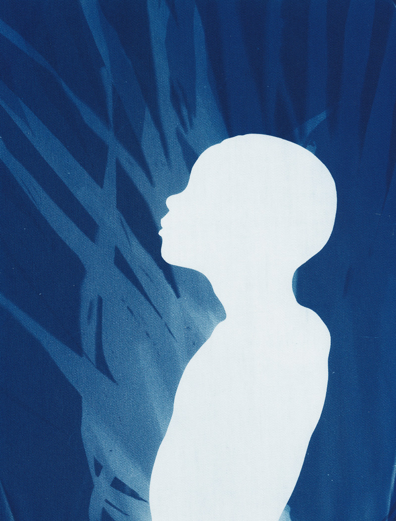In the Wild, cyanotype on cotton fabric, Mike Tedder