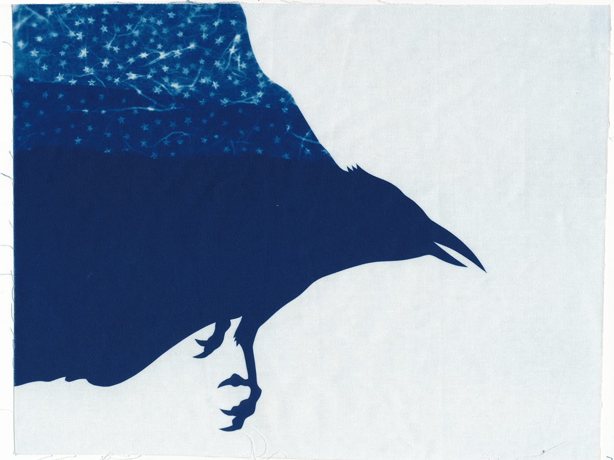 Here Comes the Night, cyanotype on cotton fabric, Mike Tedder