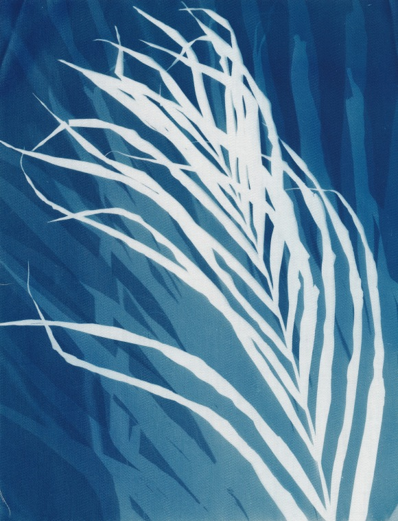 Stimmen im Wind, cyanotype on cotton fabric, Mike Tedder